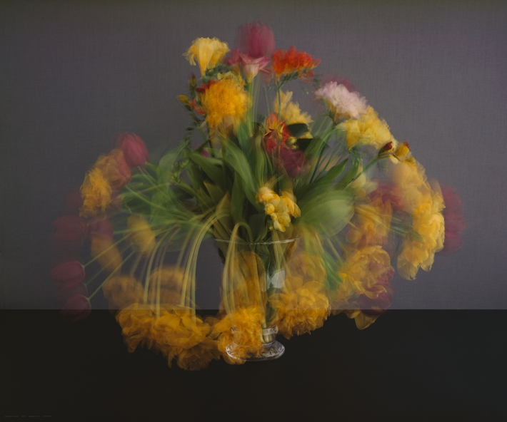 Galeria: Oscar Cruz Artista/artist: Michael Wesely Titulo/title: Stilleben (17.4 – 24.4.2012), 2012 Técnica/Technique: Lambda-print aplicada em metacrilato Dimensões/dimensions:  151 X 181 cm