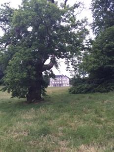 Chateau de Locguenolé's wild surroundings